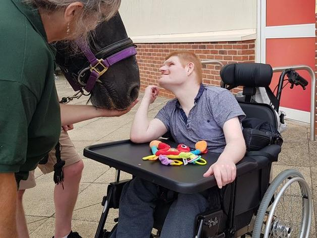 Martin Morrison was able to admire the horses in Dursley town centre during the recent festival, thanks to his new special wheelchair