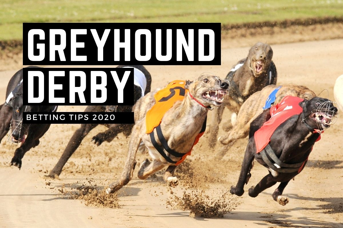 Greyhound racing betting rules for limit spread betting taxed