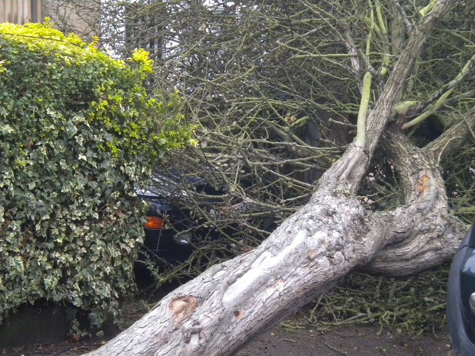 Firefighters lend a hand as Storm Aileen hits South Gloucestershire (stock storm image)