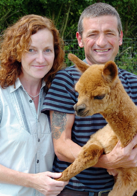 Emma and Rodney Bird with one of their alpacas