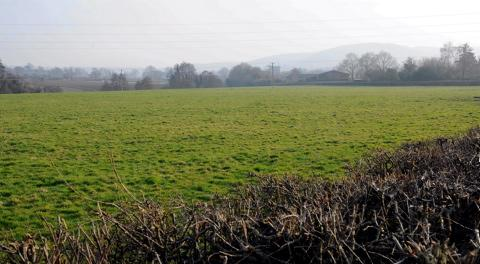 Fields off Box Road in Cam targeted for housing development