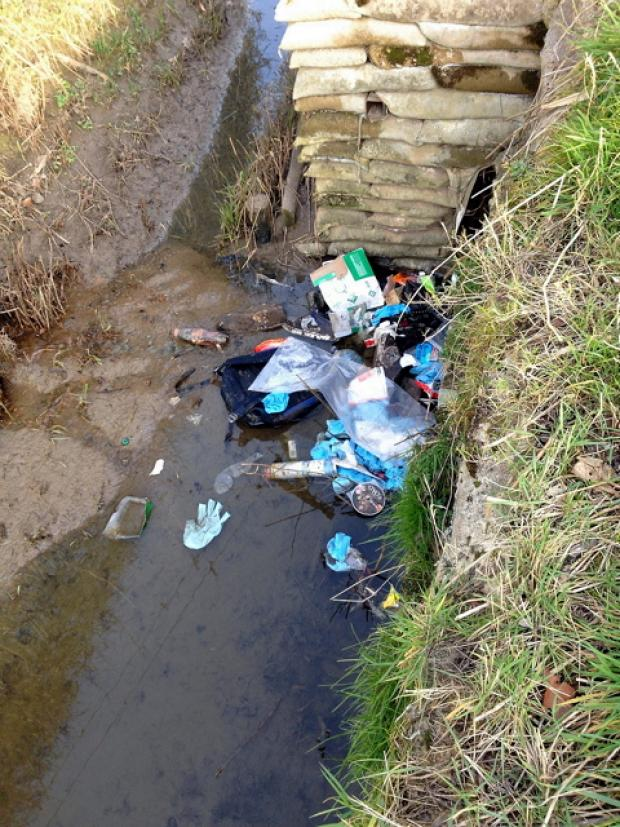 Rubbish gathering in the stream alongside Penny Lane in Slimbridge