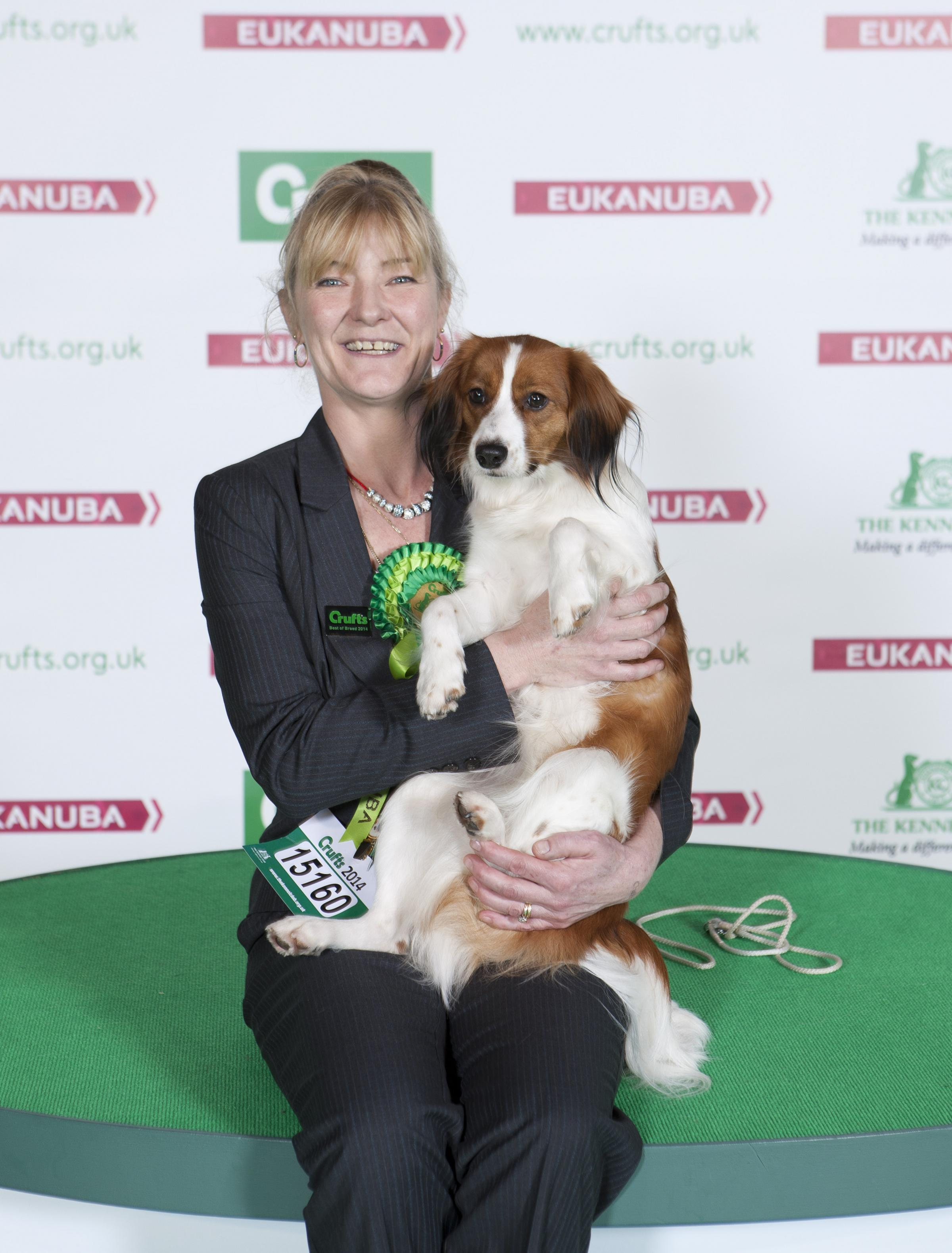 Christina Suiter 49, of Tyndale Road, Cam and 23-moth-old kooikerhondje Freya fought off competition to scoop Best in Breed, Best Bitch and first in post-graduate bitch at Crufts this year.
