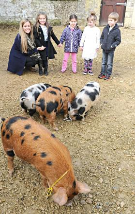 Carley Rudrum of Old Down Manor with the winners of their name the pigs competition, Indiana Edwards, 4, Freya Hall, 5, Sienna CFhapman, 6, and Daniel Stokes, 5 (5020416)