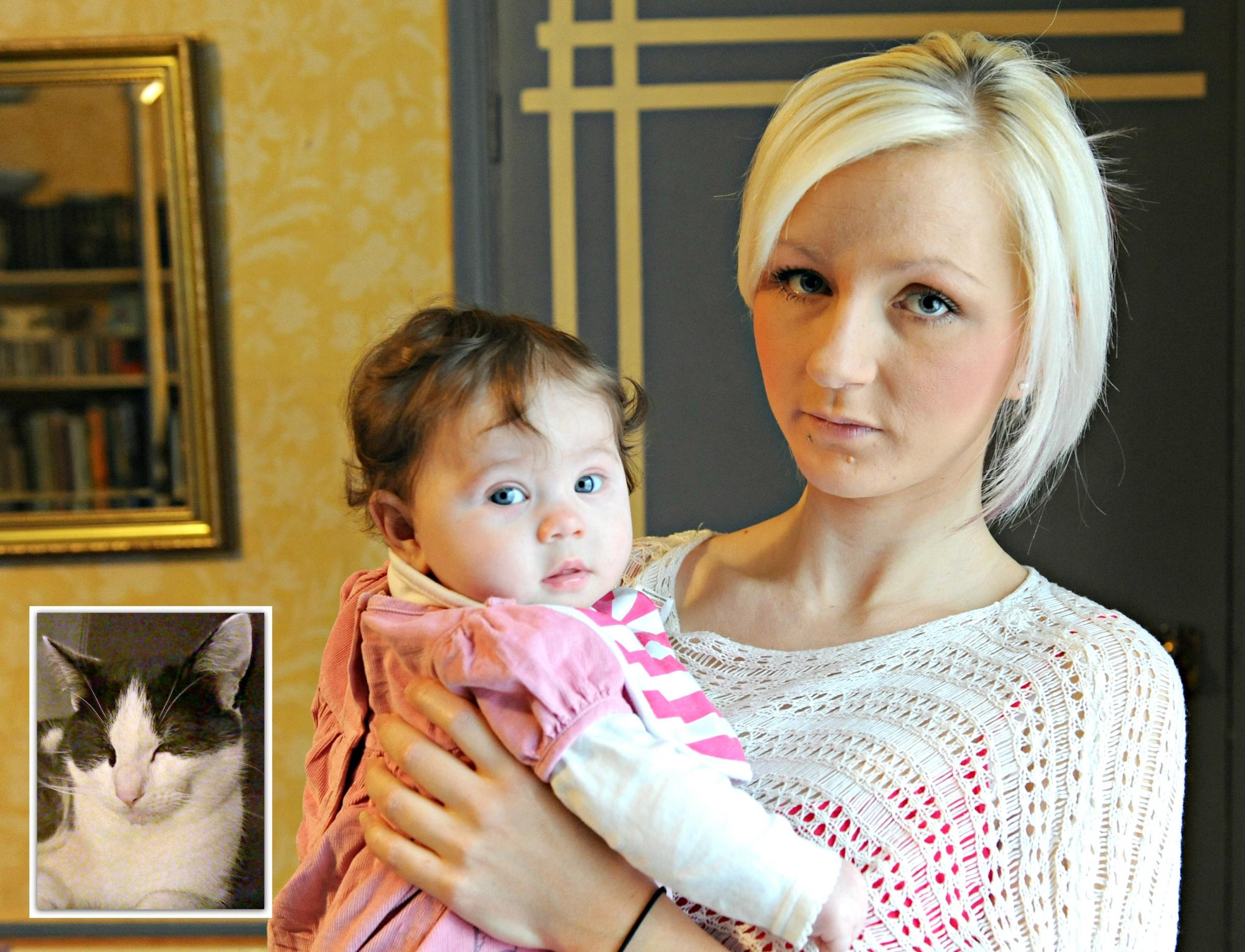 Dursley mother Hannah Woods and three-month-old daugther Talia escape injury after breeze block smashes through window and kills family cat Harry (inset)