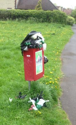 The overflowing dog bin in St John's Park, Chipping Sodbury