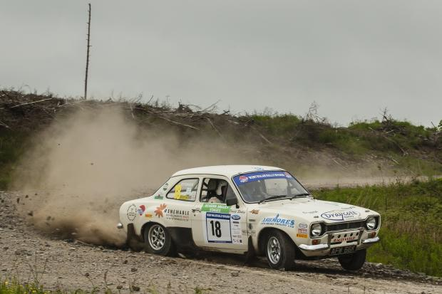 DAVID Stokes in action at the Severn Valley Stages of the WWRS RAC Championship. Picture by Chris Huish.