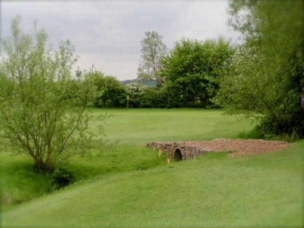 The fourth hole at Canons Court  (9872766)