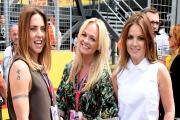 Here are all the celebs spotted at Silverstone as Lewis Hamilton battled to win the British Grand Prix