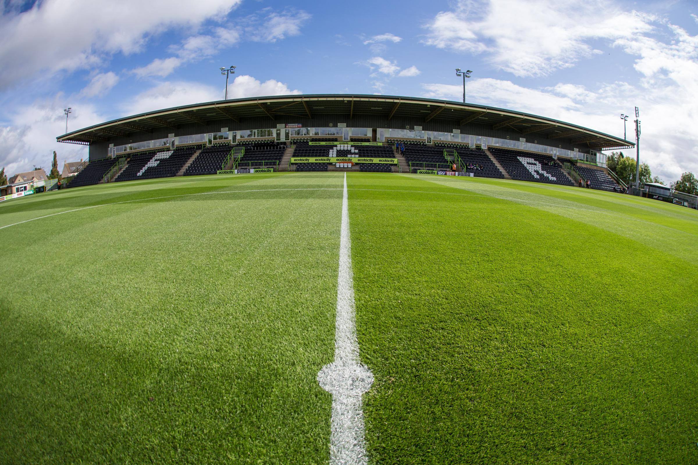 The New Lawn     Pic: Shane Healey/ Pro Sports Images