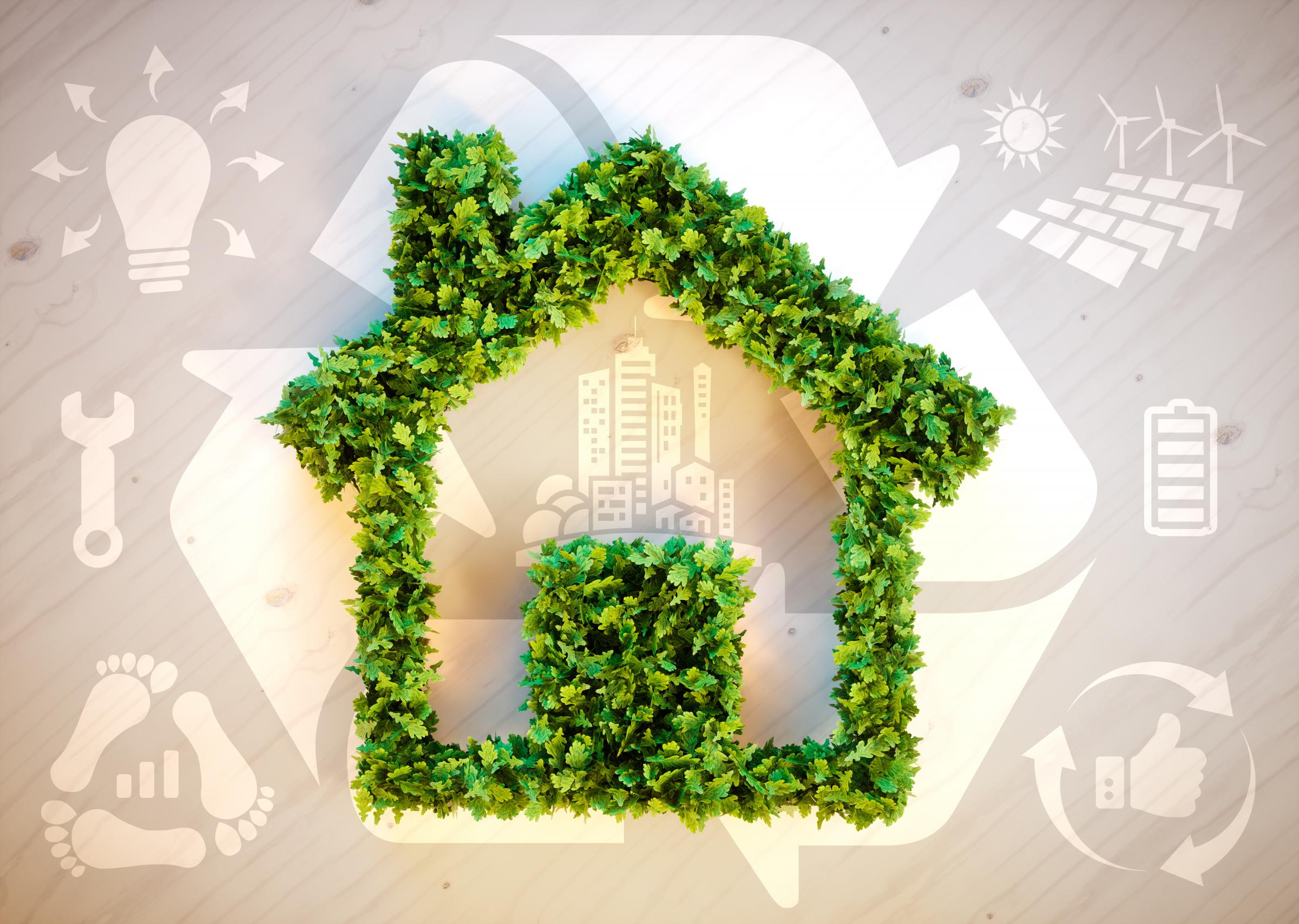 Home renters are thinking green