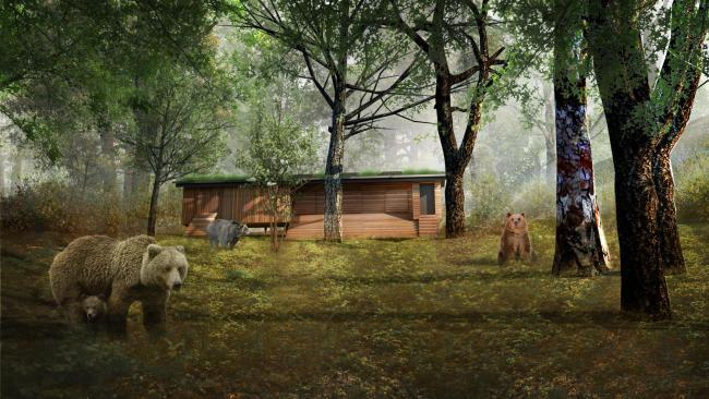 An artist's impression of Bear House at The Wild Place Project